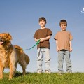 kids-walking-a-dog-to-exercise